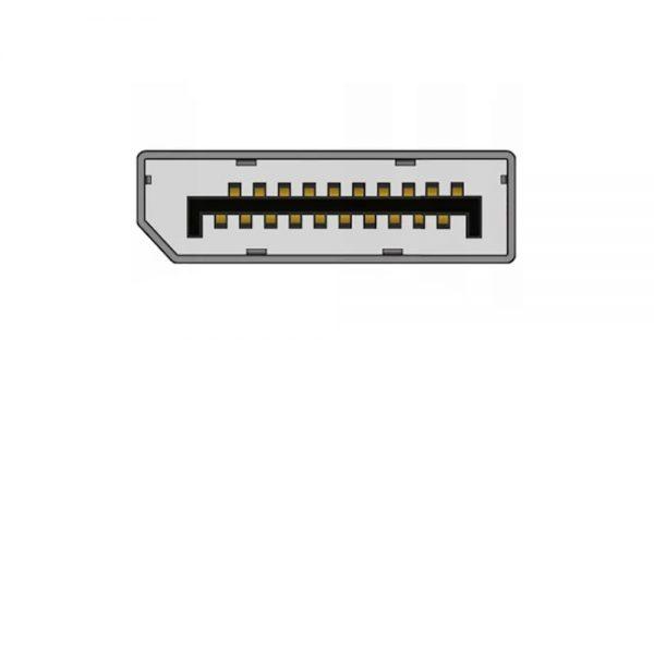 Display Port / DP